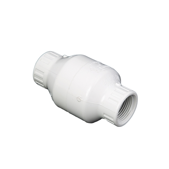 "Picture of PVC CHECK VALVE 1"" WHITE FIPT"