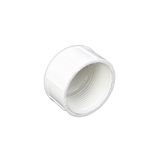 "Picture of PVC CAP 2-1/2"" FIPT"