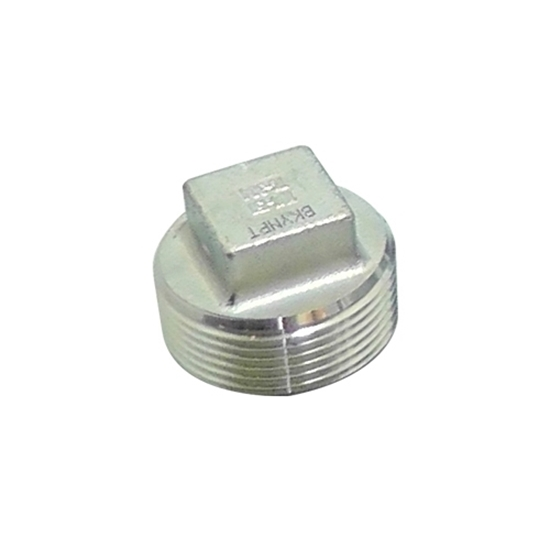 "Picture of SS CAP 1/4"" MIPT"